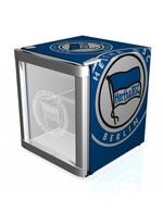 Minikühlschrank im Vereinsdesign BVB